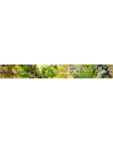 Аллея стеклянный бордюр (Примавера)