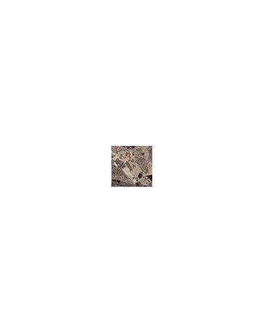 Illyria marrone Вставка напольная 5х5