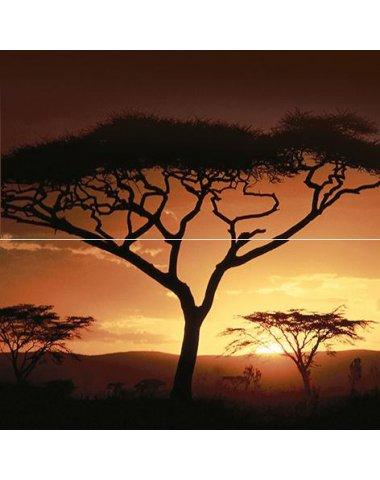 Africa Панно 40х40 (из 2 плиток)