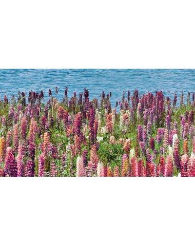 Dec Flora Декор 25х45