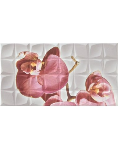 Dec. Orchid C Blanco BLN Декор 31,6x59,34