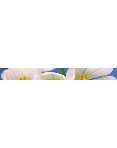 Blue garden Бордюр 6х60