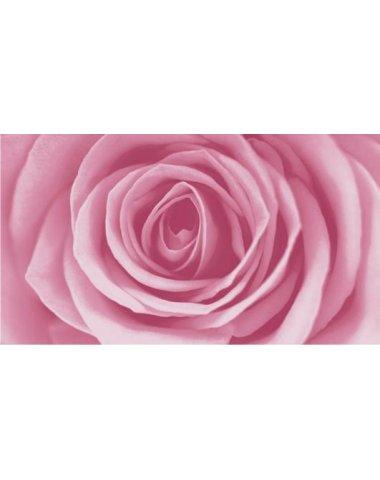 Dec Rose Декор 25х45
