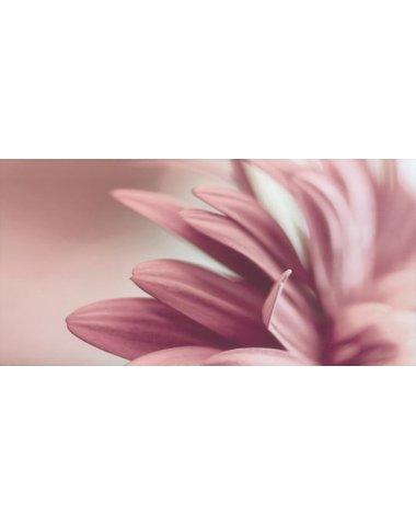 Sorenta bianco durst kwiaty A Декор 30x60