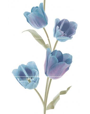 Tulips Frios Панно (из 3-х плиток) 50х75