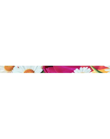 Brazil Listelo Flowers 2 Бордюр 50х730 мм/16 шт