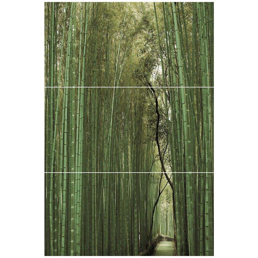 Bambu   Панно (из 3-х плиток ) D/E/F 50х75