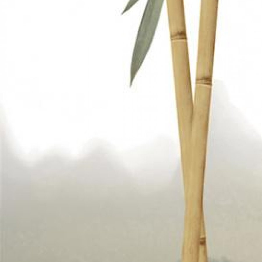 Бамбук Панно 24,9х109,2