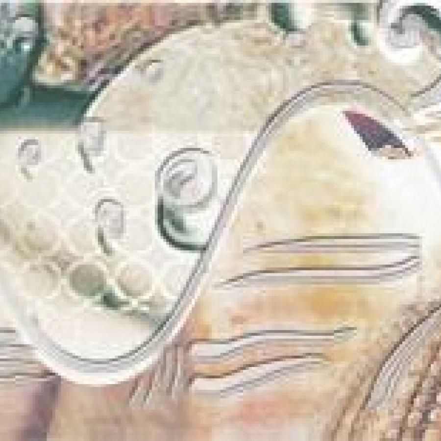Caliza Бордюр Beige Mare 50,5x6,2